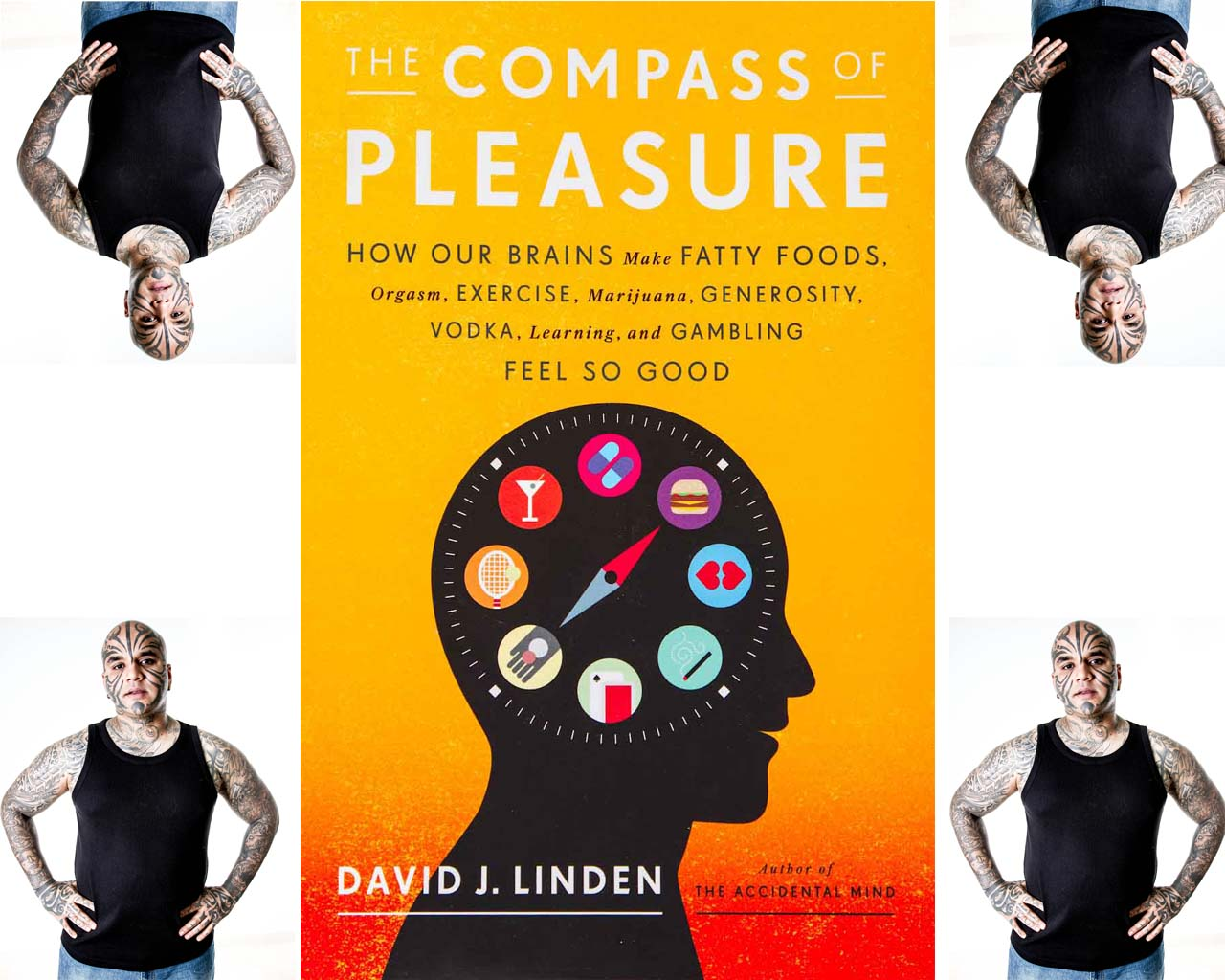"""the compass of pleasure by david j linden Praise for the compass of pleasure """"in his book the compass of pleasure, the johns hopkins neurobiologist david j linden explicates the workings of [the regions of the brain] known collectively as the reward system, elegantly drawing on sources ranging from personal experience to studies of brain activity to experiments with molecules and genes""""."""