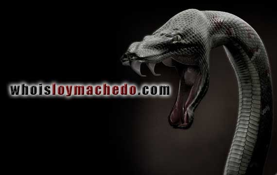 The Black Mamba Of Fear by Loy Machedo
