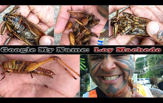 Loy Machedo Eating Fried Insects – LIVE Uncensored Video (Warning!!!)
